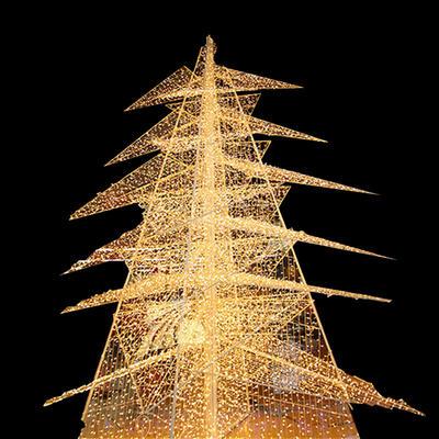 3D Large Christmas Motif Light